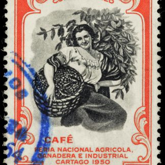 Costa Rica Tarrazu La Pastora - distinct