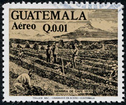 Guatemala Huehuetenango Huixoc RFA - Subscription