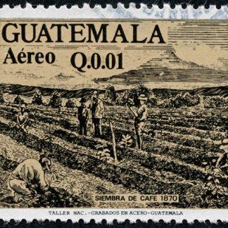 Guatemala Huehuetenango Huixoc RFA